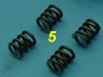 Lauterbacher Standard Springs For 4-shoe-clutch (4)