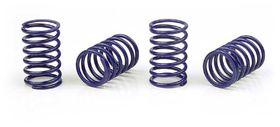 Xray Spring-Set D=1.7 (25 Lb) Dark-Blue  (4)