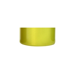 Faskolor Lexan Paint - 60ml - Fasescent Yellow